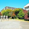 【下京区・焼き鳥屋&居酒屋】おこげスープ!