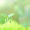 環境への配慮とマーケティングを学んで独立開業をしよう