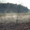 畑から蒸気がモクモク