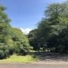 小石川植物園 16