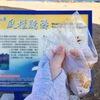 【台湾】澎湖(ポンフー)風櫃の見どころを全て紹介|澎湖人おすすめ薬膳卵とサボテンアイスを食べるよ!