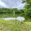 踊鹿の池(岩手県遠野)