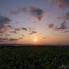 美瑛の夕日が見せた「夢」