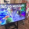 金魚ミュージアム 忍者タウン に行ってきました。
