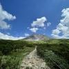 北海道旅行 day4 part.1 :旭岳・美瑛ランチ(旭岳ロープウェイ・旭岳散策コース・旭岳で見つけた夏の花) / 美瑛でランチ(レストラン アスペルジュ)