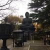 高島平の赤塚公園の先にある東京大仏について