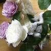 家に花を飾るという贅沢