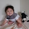 「おすわりで景色が変わる生後6ヵ月から7ヵ月の赤ちゃんの特徴」