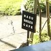 【観光】那須観光にてSHOZO CAFFEにてうまうまスコーンとまったり時間で癒されてきました