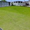 芝生の除草剤撒き 〜アパートの庭〜