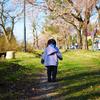 桜開花。GWまでにやることメモ。