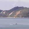 イルカがいつもの海に&京都府南山城村