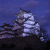 【New Year Trip 2020 大阪/兵庫/徳島】1.旅の始まりは姫路城!
