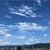 連続の猛暑日!?