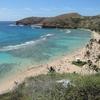 【男だってハワイが好きだ2!~2日目~】「ハナウマベイ」は全米最強のベストビーチ!「テディーズビガーバーガー」のハンバーガーに大満足⁈