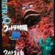 「ウルトラ特撮 PERFECT MOOK vol.06 ウルトラQ」