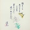 幻の花 ~ 第二十五章 溜息小町