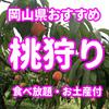 2020年 桃狩り 岡山県のおすすめ観光農園は?食べ放題あり人気の観光農園5選まとめ