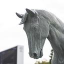 関西馬贔屓による中央競馬記録 ~関西馬対関東馬~