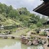 そうだ、京都へ行こうの人