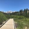 デンバーからのロッキーマウンテン国立公園1周オススメ旅行記