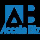 Accele Biz IT開発技術 調査報告書