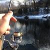 2019初管釣り