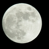 初心者だって楽しめる!月の天体観測の方法と知識《双眼鏡編》