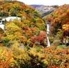 人生のスパイスに!秋のおすすめスポットご紹介
