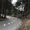 第19回青梅高水山トレラン大会