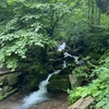 鳥取の避暑地。絶景スポットの雨滝。絶品豆腐も。
