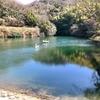 奥ノ平池(兵庫県淡路)