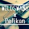 WILDSWANSとPelikanの組合わせが超絶好き問題