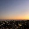 【豊橋】街の魅力を伝えてくれるTwitterアカウント6選とおまけをご紹介