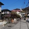 【散歩】松田山「西平畑公園」(ハーブガーデン)の河津桜。今満開です