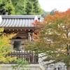 八坂神社、円山公園、大谷祖廟の紅葉②観光34...20191103京都