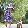しつけのきほん~お散歩中の行動学~急発進する犬編
