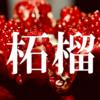 【名前・漢字の由来】「ざくろ」は何故「柘榴」と書く?【柘榴】
