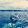 釣行記 千葉県 鴨川 アシカ島 石鯛釣り 2017年9月
