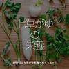 376食目「七草がゆの栄養」1月7日は七草がゆを食べなくっちゃ!