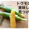 【野菜不足の人必見】美味しいトウモロコシを食べて夏を乗り切ろう!