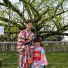 日本旅行2017年4月京都旅行⑥🚌 東寺&東本願寺.