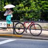 真夏の都会に自転車