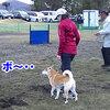 JKC 山中湖 北陸甲信越ブロック訓練競技会 2