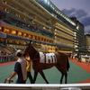 香港の競馬【ハッピーバレー競馬場】簡単な馬券の買い方。当日購入出来る指定席