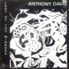 Anthony Davis: Lady Of The Mirrors (1980) 端正な音のIndia Navigation盤
