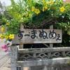 妊婦が沖縄旅行♪〜すーまぬめぇ〜