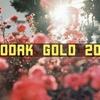 《レビュー》KODAK GOLD 200