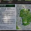 5月は野草・自然林を出歩きます。(新治の森編)