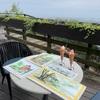 水彩de風景スケッチ散策 気になる街角 布引ハーブ園 2020